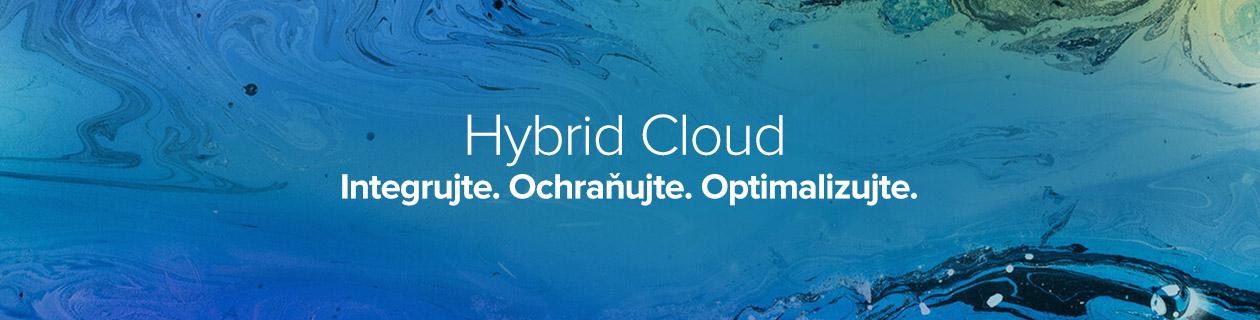 NetApp HybridCloud